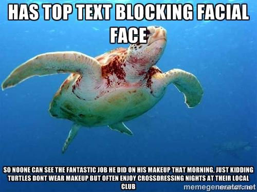 sparkling turtle meme