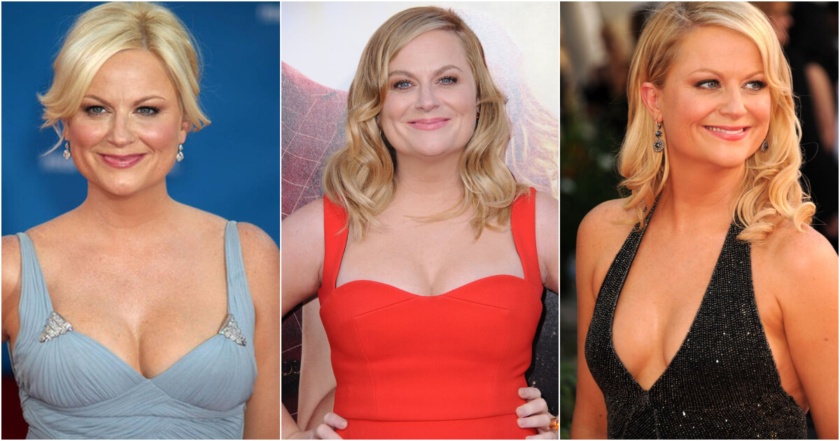 61 Sexy Pictures Of Amy Poehler Will Speed up A Gigantic Grin All over