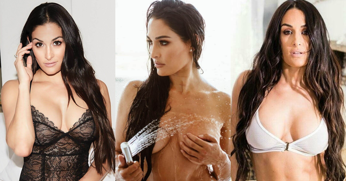 61 Sexy Pictures Of Brie Bella Uncover Her Awesome Body
