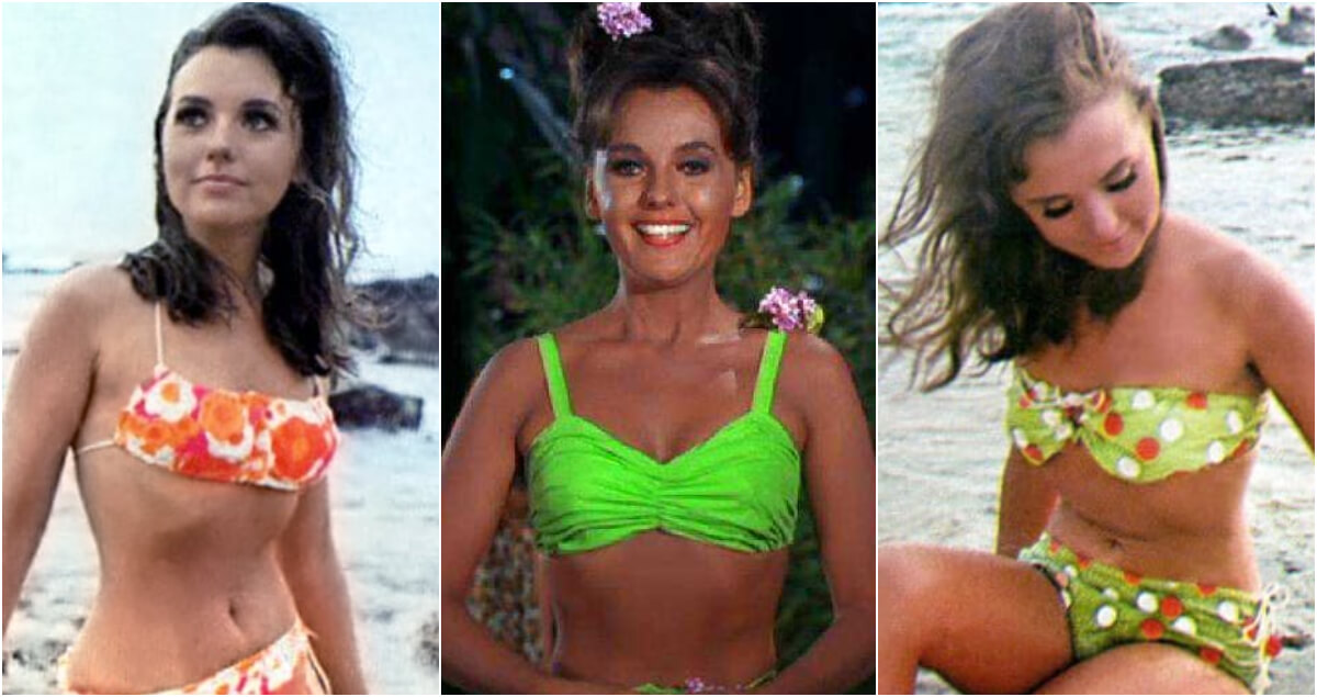 61 Sexy Pictures Of Dawn Wells Will Leave You Flabbergasted By Her Hot Magnificence