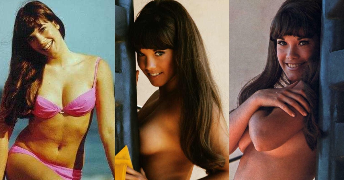 65+ Sexy Pictures Of Barbi Benton Are Simply Excessively Damn Delectable