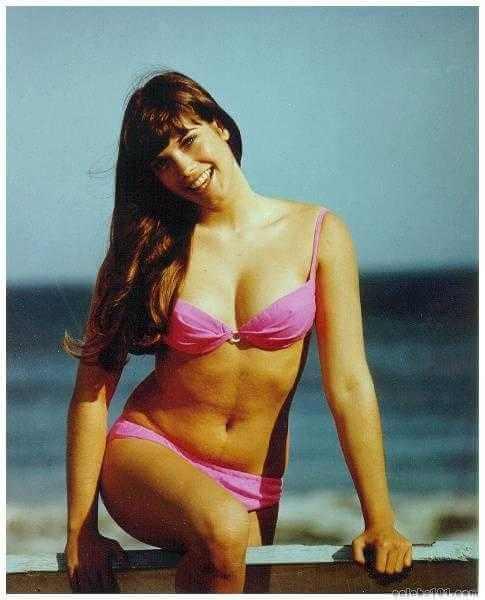 Barbi Benton hot bikini pic