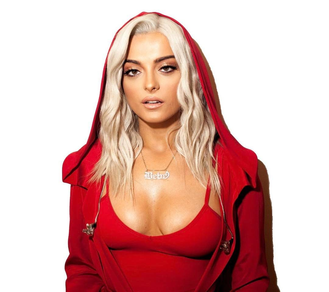 Bebe Rexha hot boobs pic