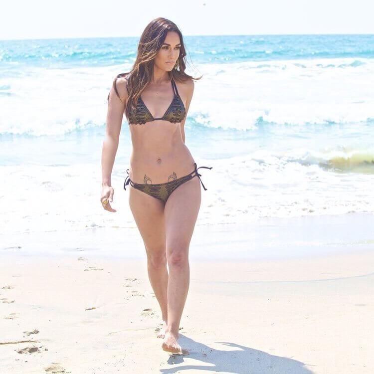 Brie Bella sexy bikini pictures