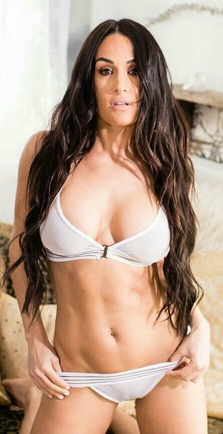 Brie Bella sexy pic