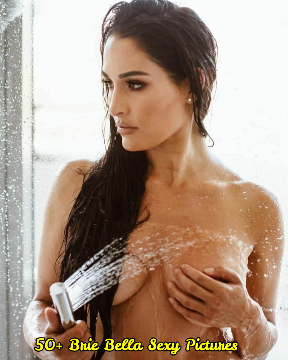 Brie Bella sexy topless pic