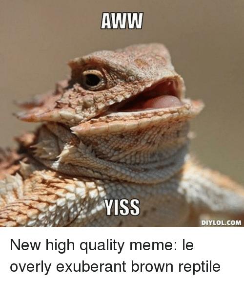 Funny Aww Yiss memes
