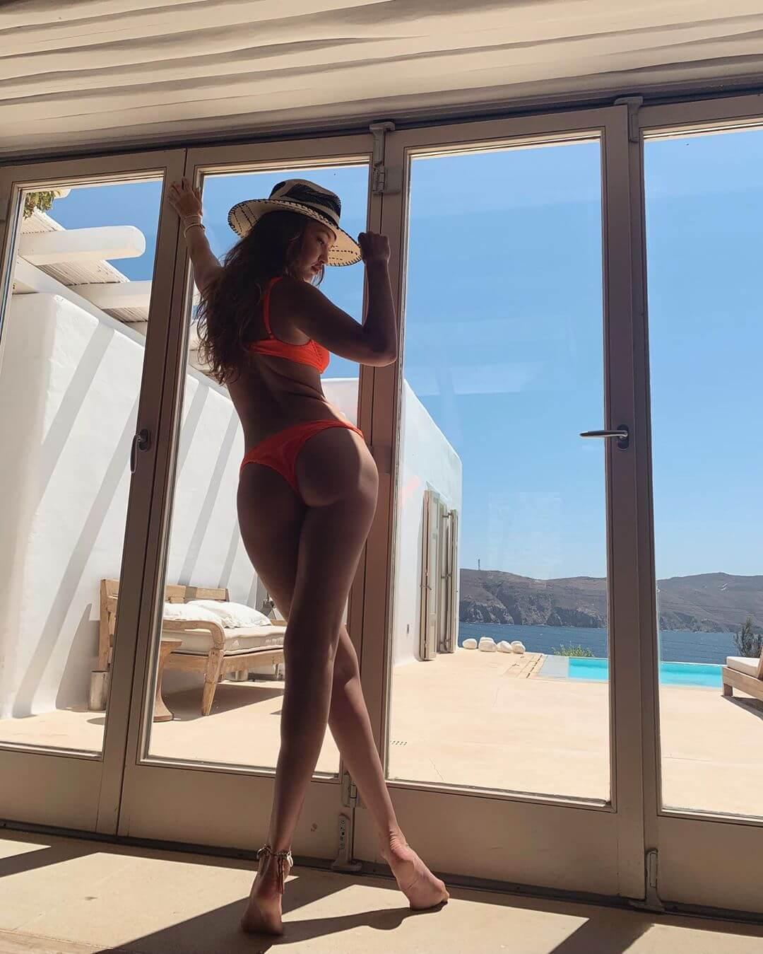 Gigi Hadid sexy ass pic