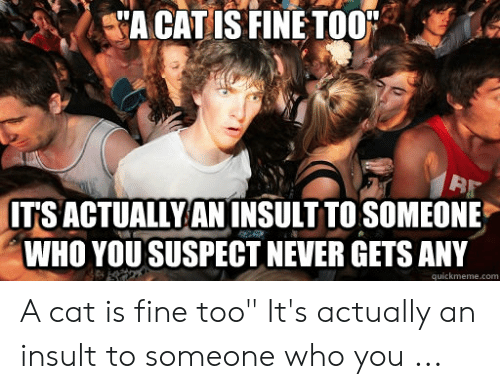Hilarious A Cat Is Fine Too memes