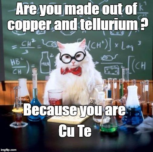 Hilarious Chemistry Cat memes