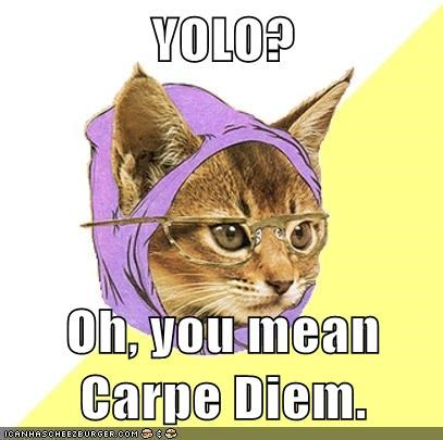 Hilarious Hipster Kitty memes