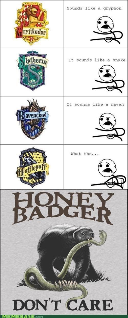 Hilarious Honey Badger memes