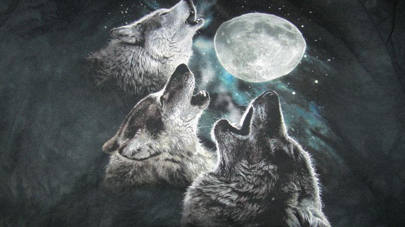 Hilarious Three Wolf Moon memes