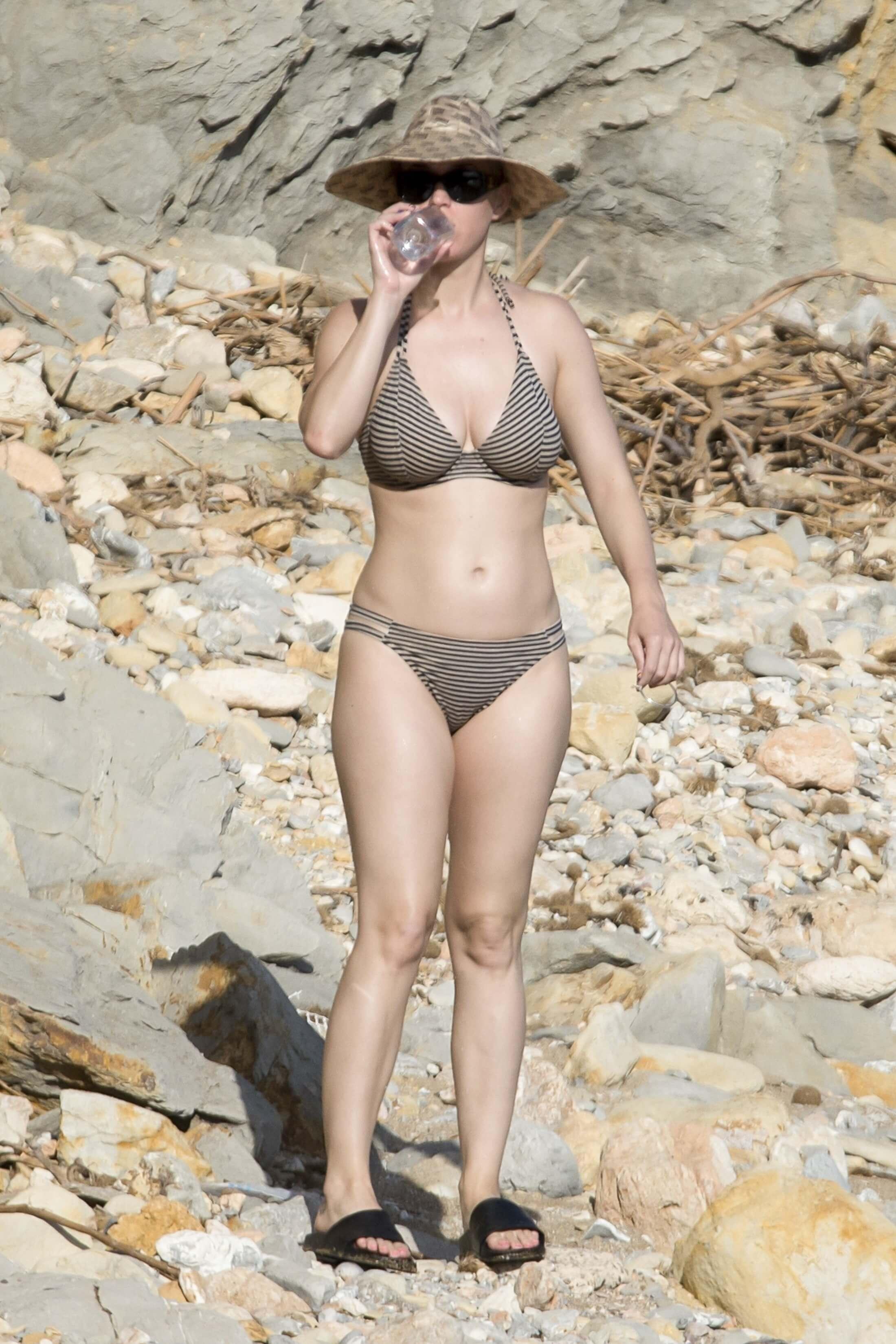 Katy Perry sexy bikini picture