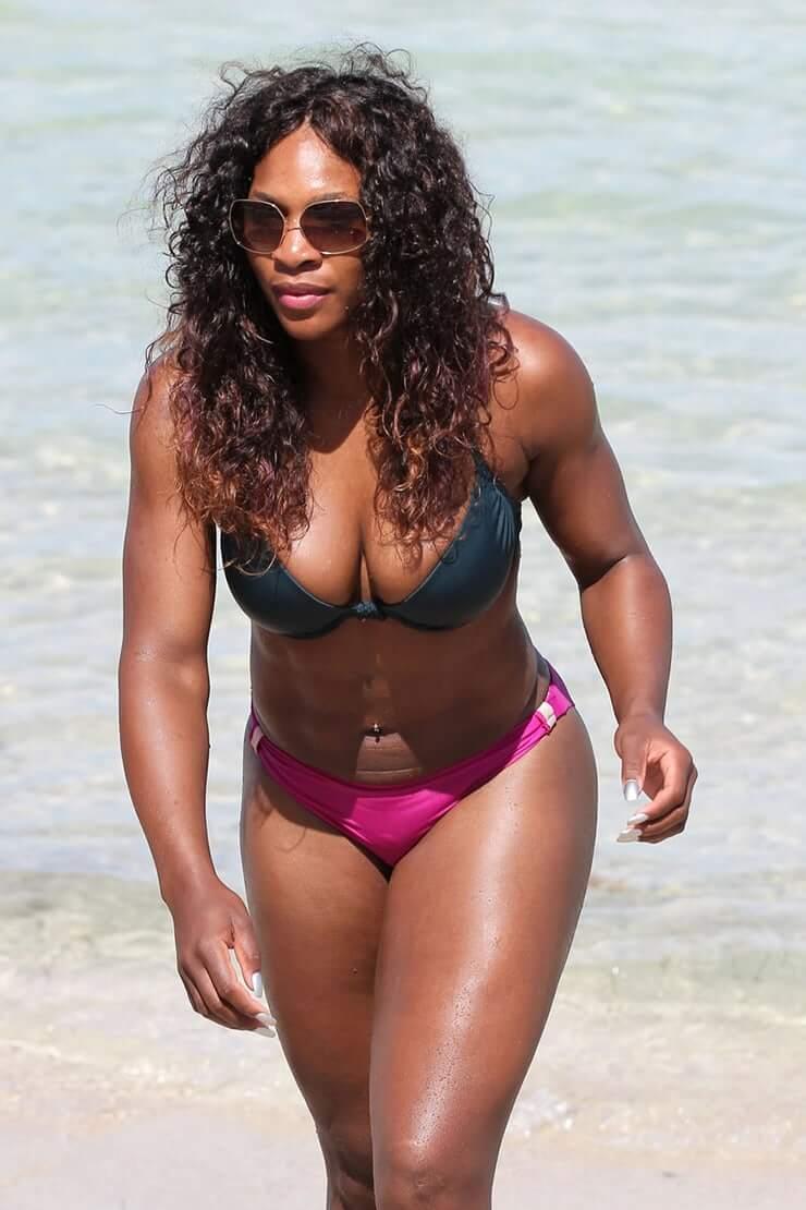 Serena Williams hot busty pics