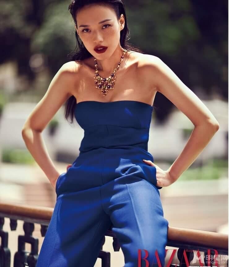 Shu Qi sexy photo