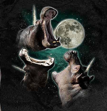 amusing Three Wolf Moon memes
