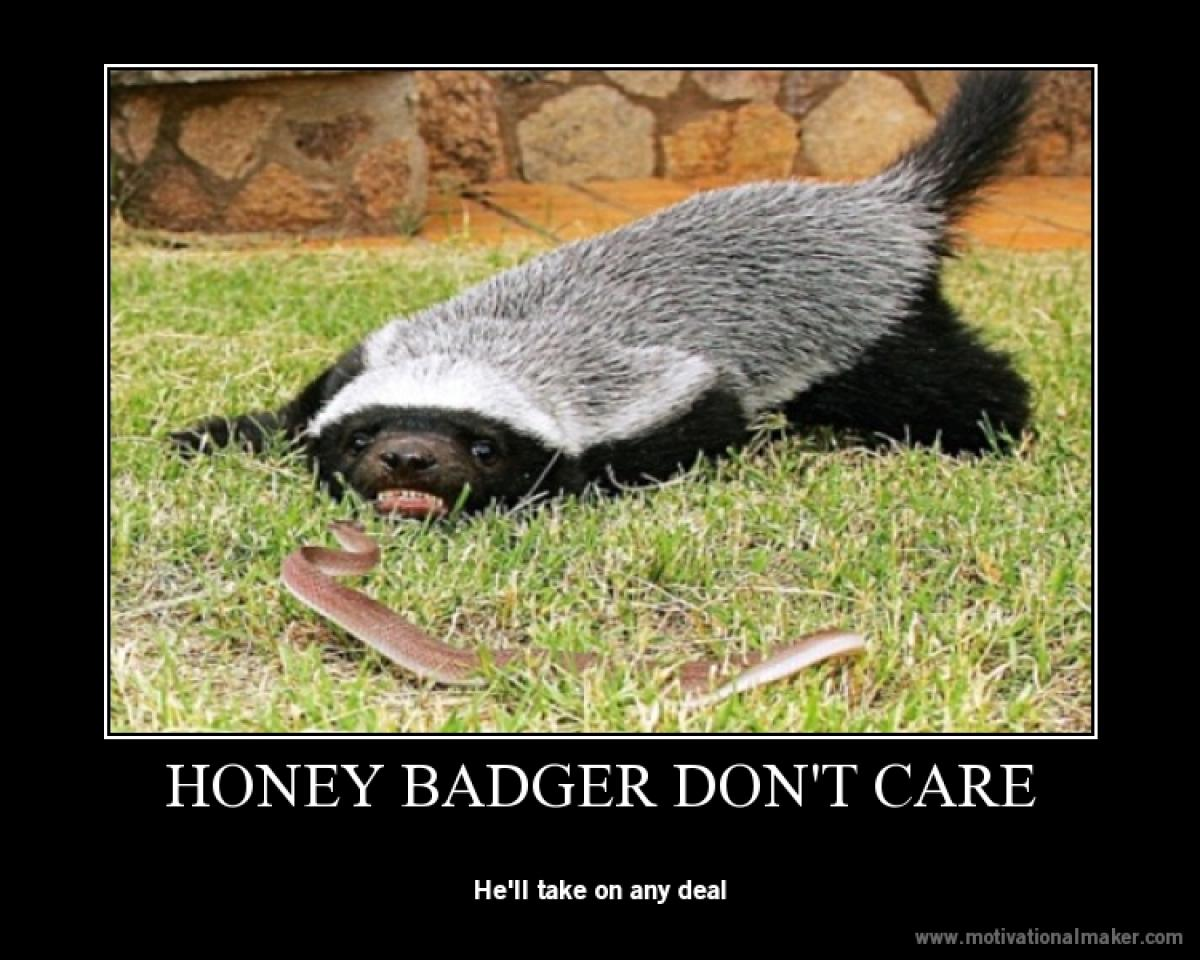 cheerful Honey Badger memes