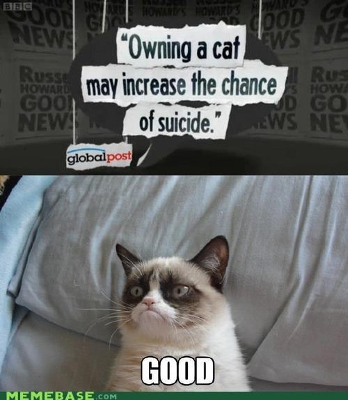 comical An Hero memes
