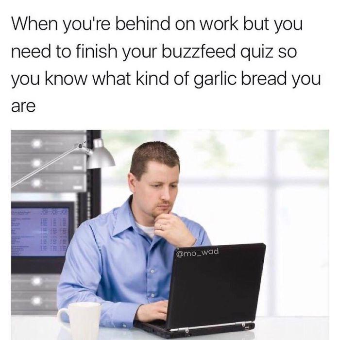 droll, Job memes