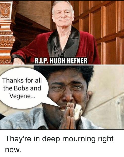 entertaining Bobs and Vegana memes