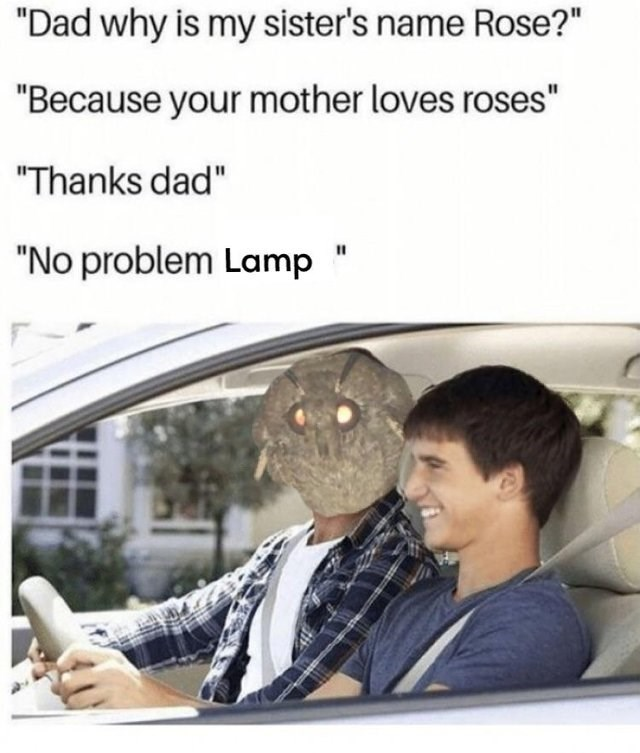 entertaining Moth Lamp memes