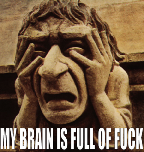 entertaining My Brain is Full of Fuck memes