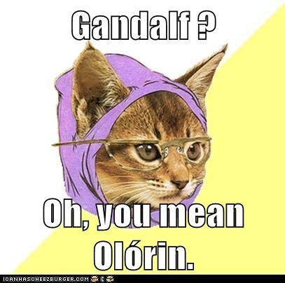 high-spirited Hipster Kitty memes