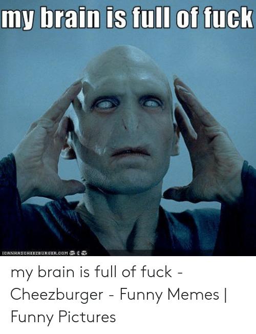 high-spirited My Brain is Full of Fuck memes