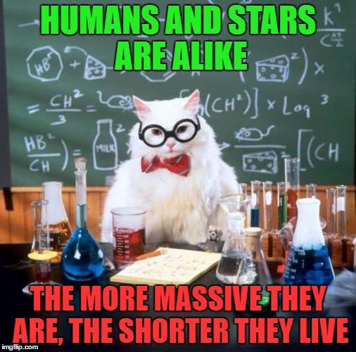 humorous Chemistry Cat memes