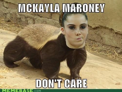 humorous Honey Badger memes