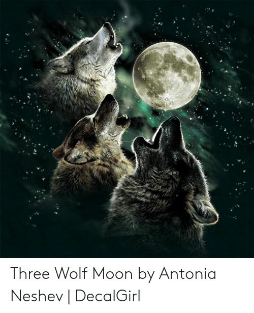 humorous Three Wolf Moon memes