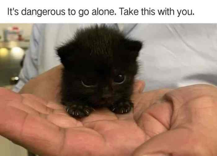 https://geeksoncoffee.com/wp-content/uploads/2019/10/l-52256-its-dangerous-to-go-alone-take-this-with-you.jpg