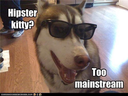 lively Hipster Kitty memes