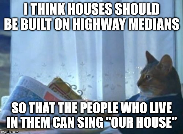 lively I Should Buy a Boat Cat memes