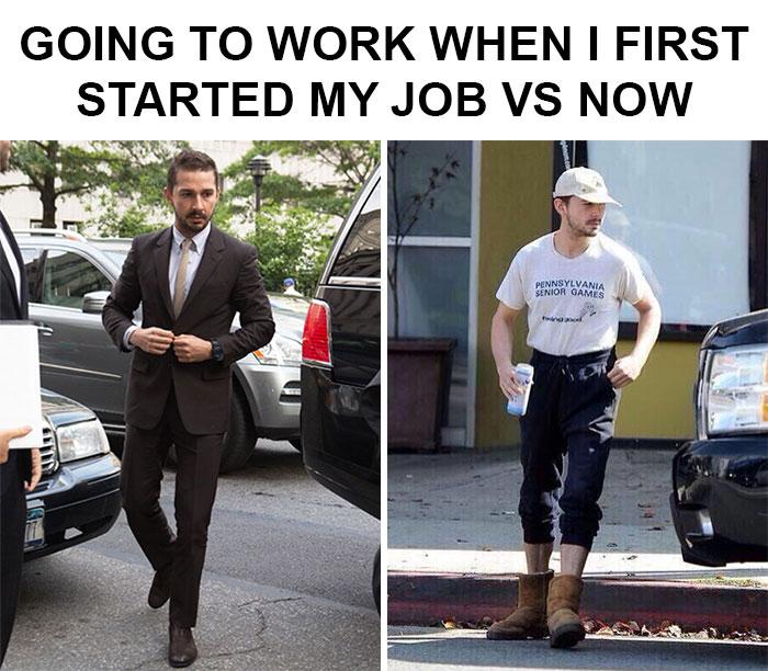 lively Job memes