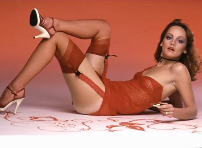 pamela sue martin lingerie