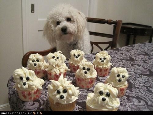 rib-tickling Cupcakes memes