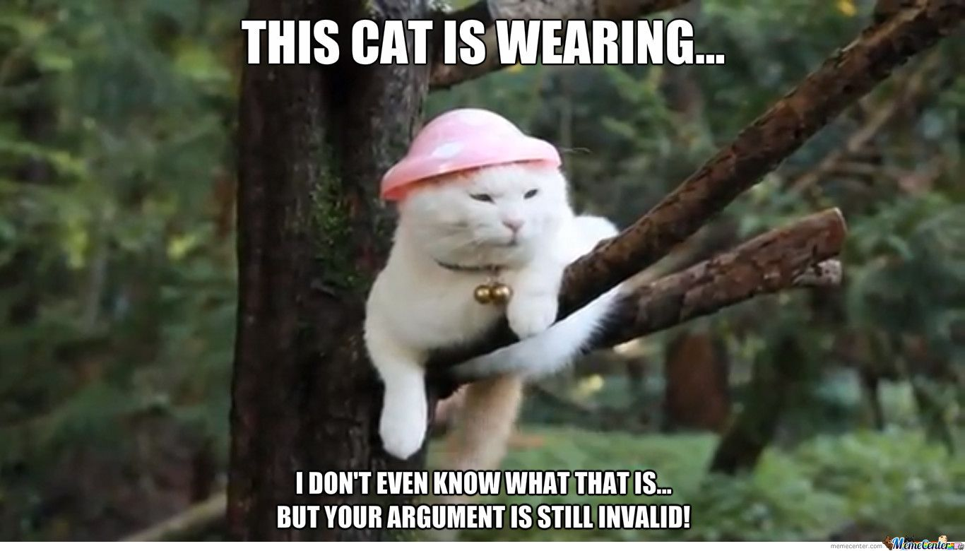 rib-tickling Your Argument Is Invalid memes