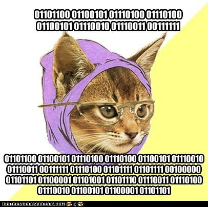 sparkling Hipster Kitty memes