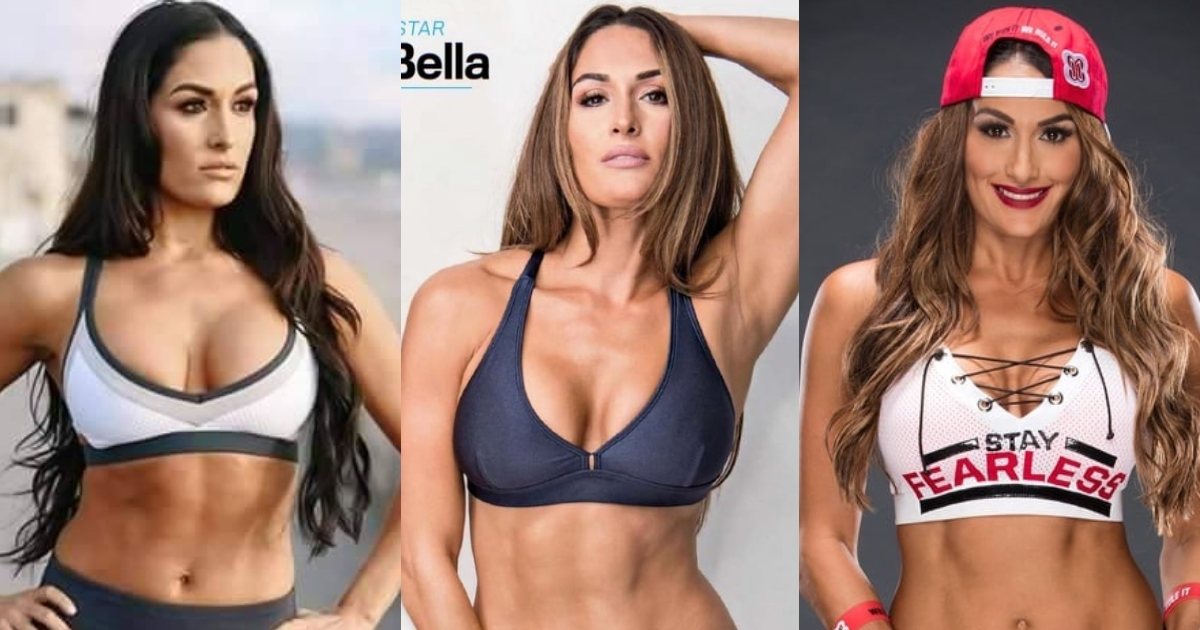 61 Nikki Bella Sexy Pictures Will Drive You Frantically Enamored With This Sexy Vixen