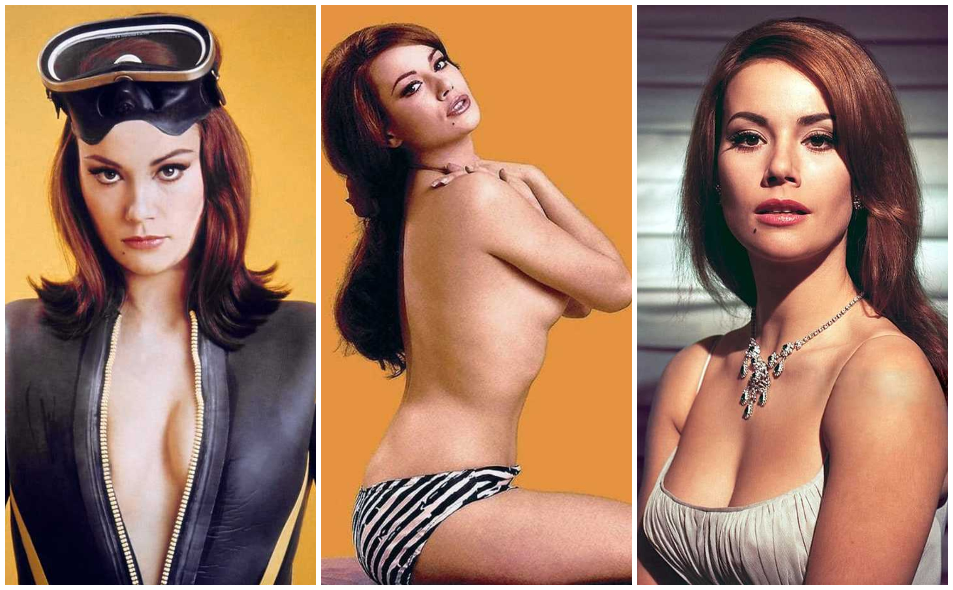 Claudine Auger Claudine Auger Nude Picture