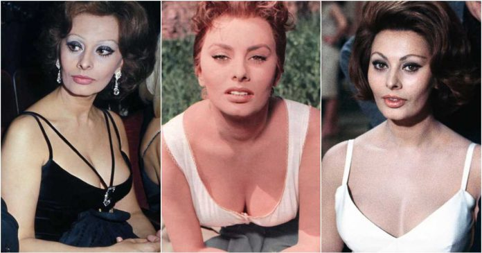 61 Sexy Pictures Of Sophia Loren Which Will Leave You Amazed And Bewildered