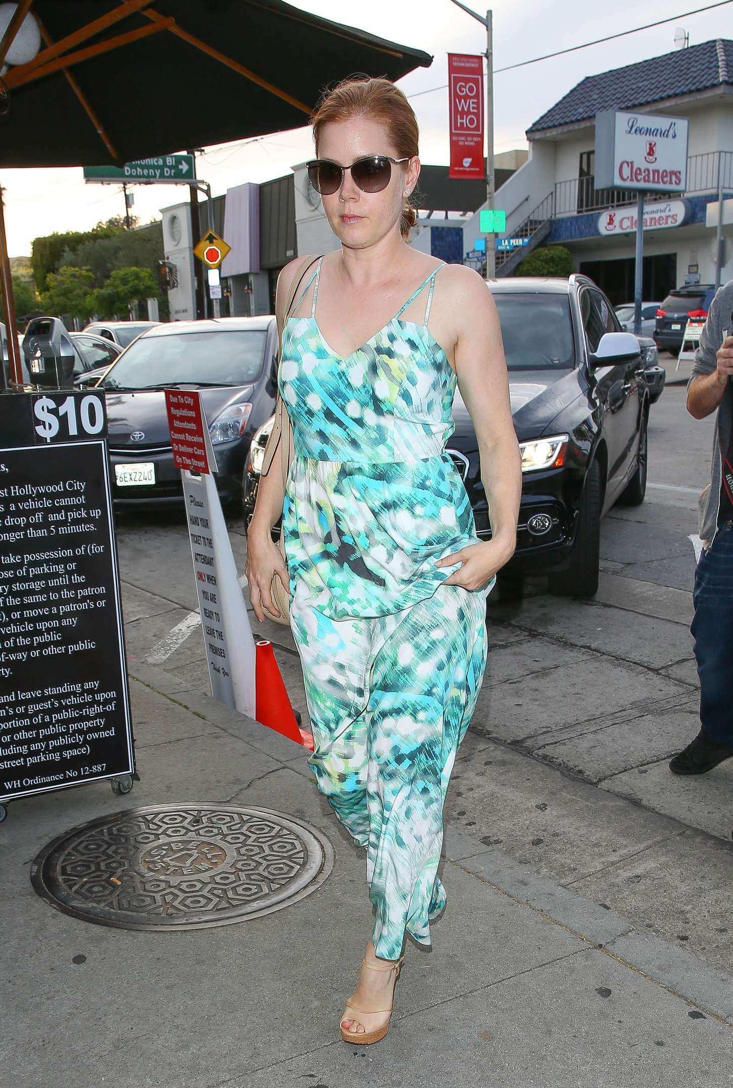 Amy Adams dress (2)