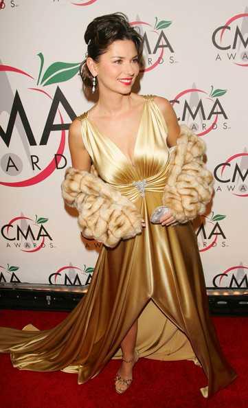 Shania Twain dress (2)