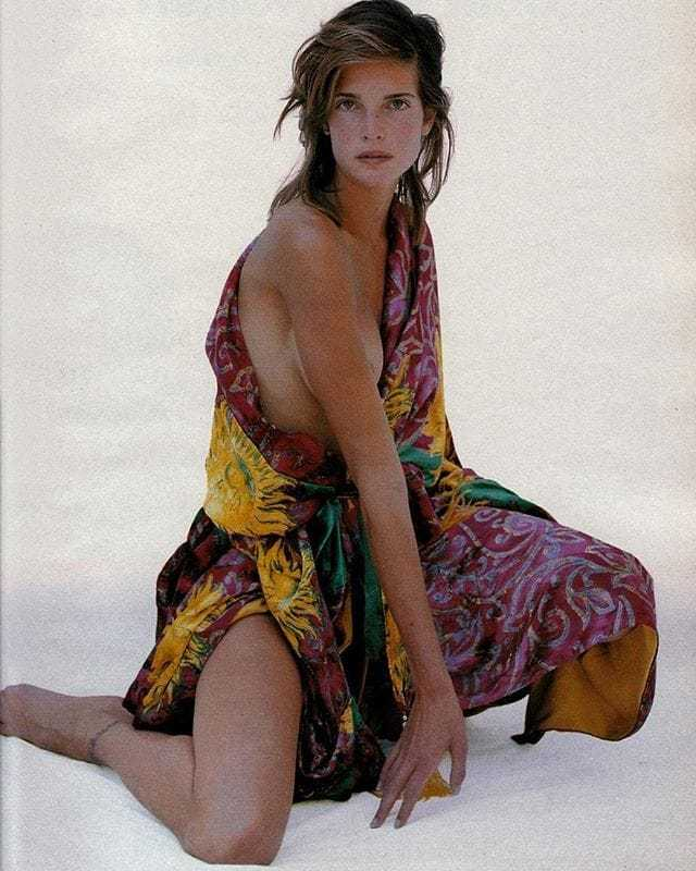 Stephanie Seymour hot picture