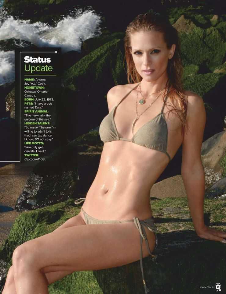 a.j. cook bikini