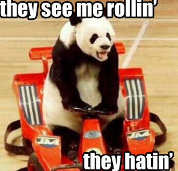 high-spirited They See Me Rollin memes