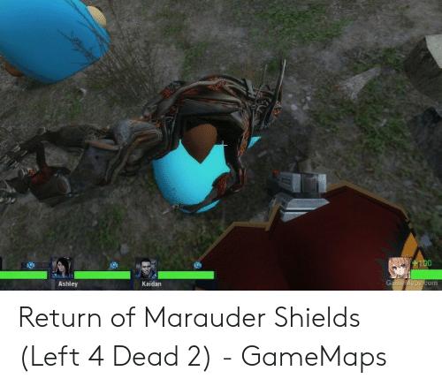humorous Marauder Shields memes