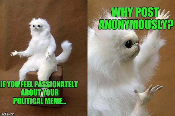 laughable Persian Cat memes